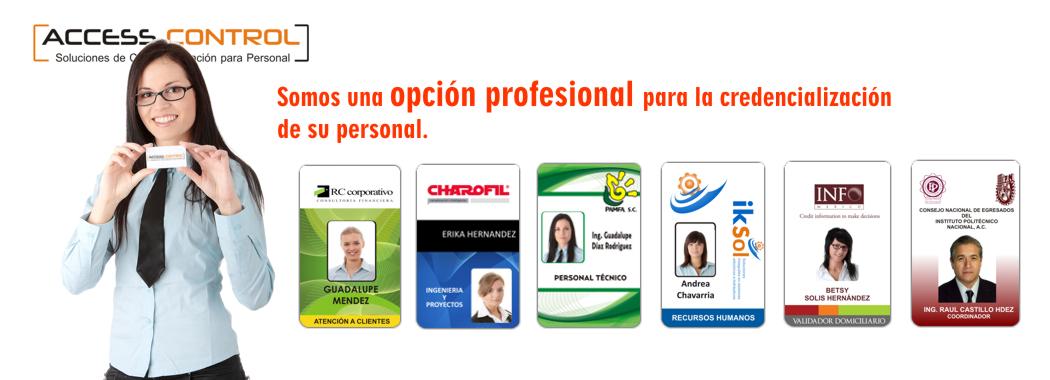 Ejemplos De Credenciales Para Empresas Credenciales En Pvc